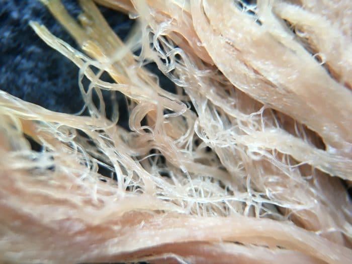 Kép: Sonka szelet makrófotója.