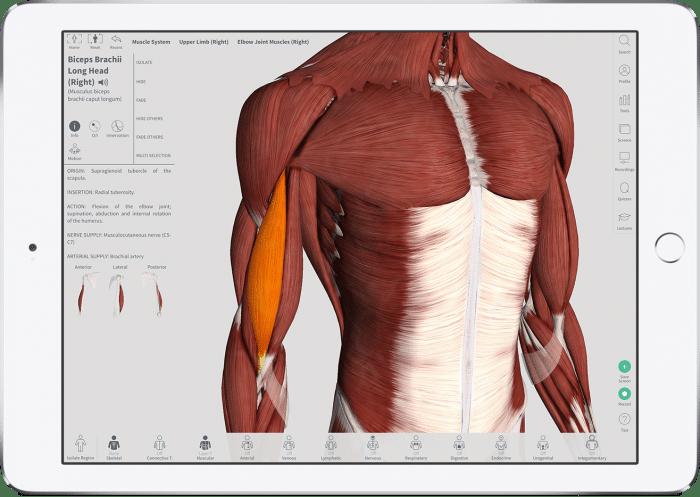 complete-anatomy